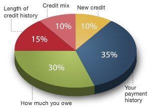 Credit Score Pie Chart The Bank Of St Elizabeth
